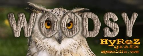 Woodsy_Owl.jpg